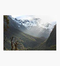 Raw Nature Photographic Print