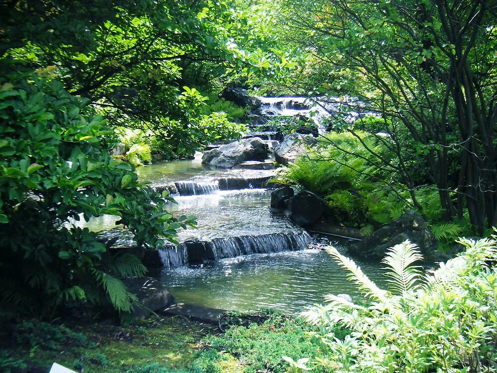 Baby Waterfall by bangogirl