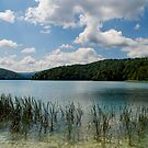 Plitvice Lakes by Luca Mancinelli
