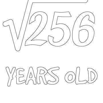 Square Root of 256: 16th Birthday 16 Years Old Teen Boy Girl by geekydesigner