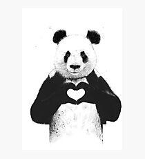 Lovely Panda Photographic Print