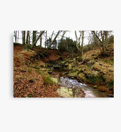 River Rye Canvas Print