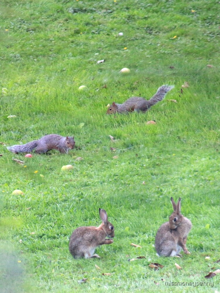 Rodents romping by missmoneypenny