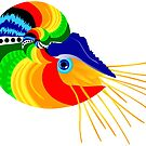 Cabo, The Fiesta Nautilus by ArtwithDog