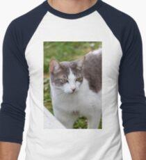 cute cat Men's Baseball ¾ T-Shirt