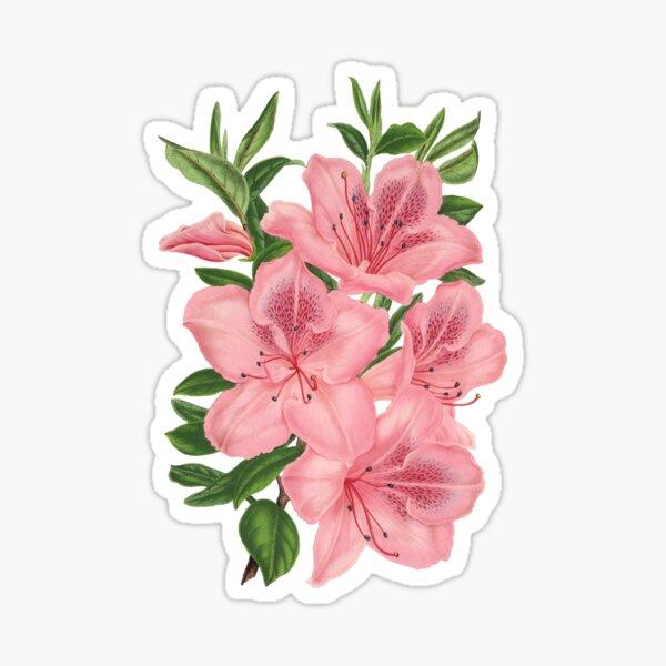 Victorian Pink Flowers  Sticker