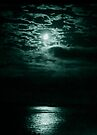 moon light by Marianna Tankelevich