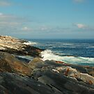 Pemaquid Coastline by fauselr