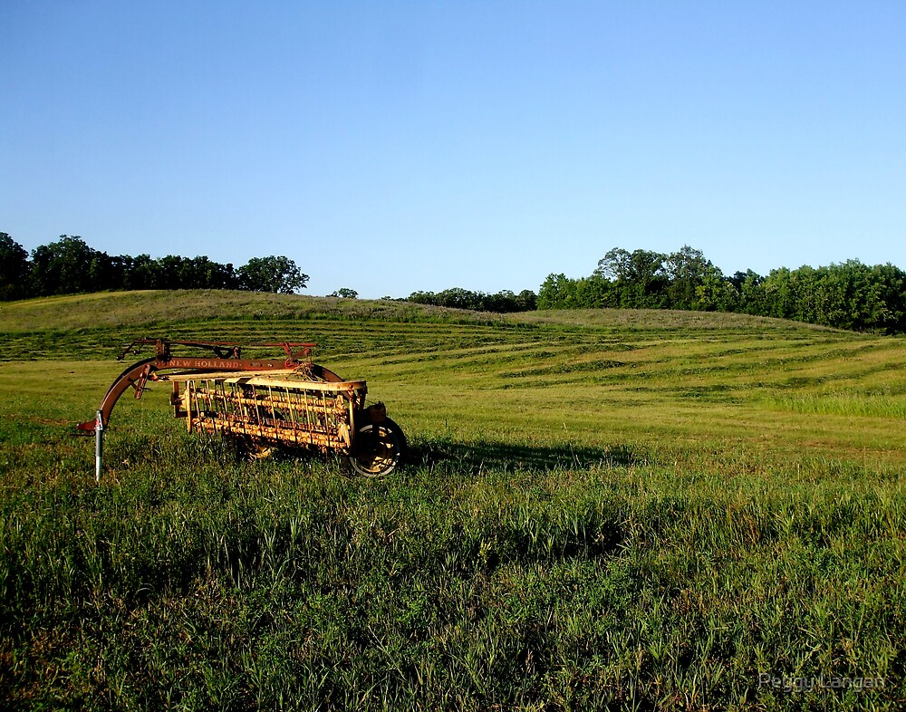 Old Farm Equipment by Peggy Langan