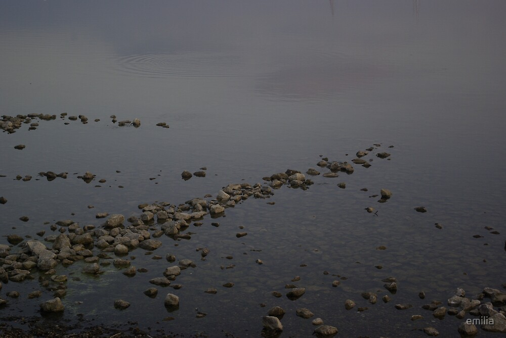 waters edge by emilia