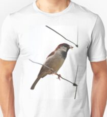 A Sparrow perched on a fence T-Shirt