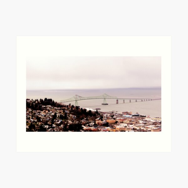 view from the Astoria Column Astoria–Megler Bridge 2 Art Print