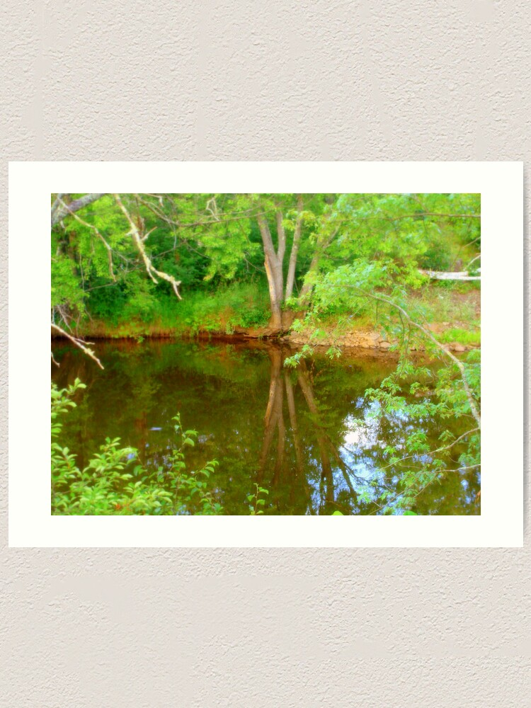 Alternate view of Soft Reflections Art Print