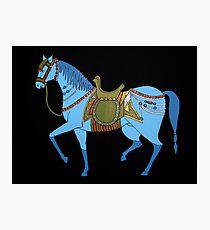 Mughal Horse Photographic Print