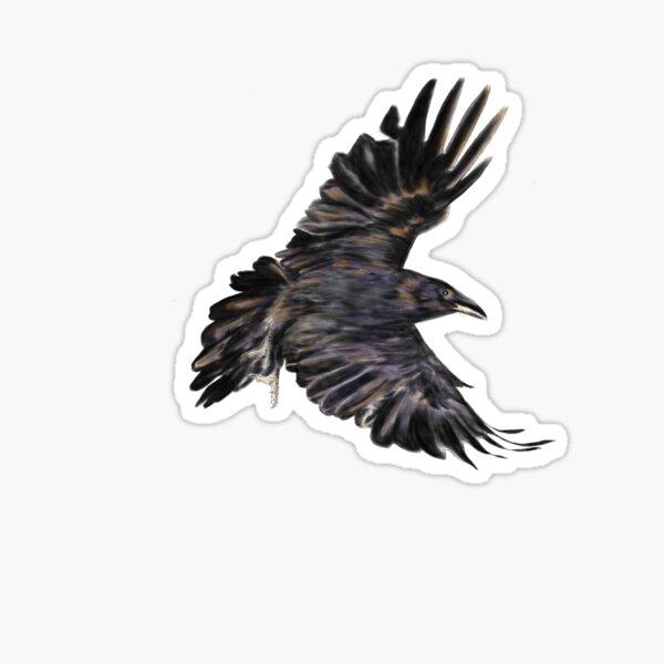 Solo Raven Sticker