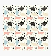 Cats pattern Photographic Print