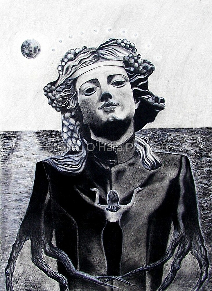 Worshipping The Idol of Vanity by Shelley O'Hara Plunkett