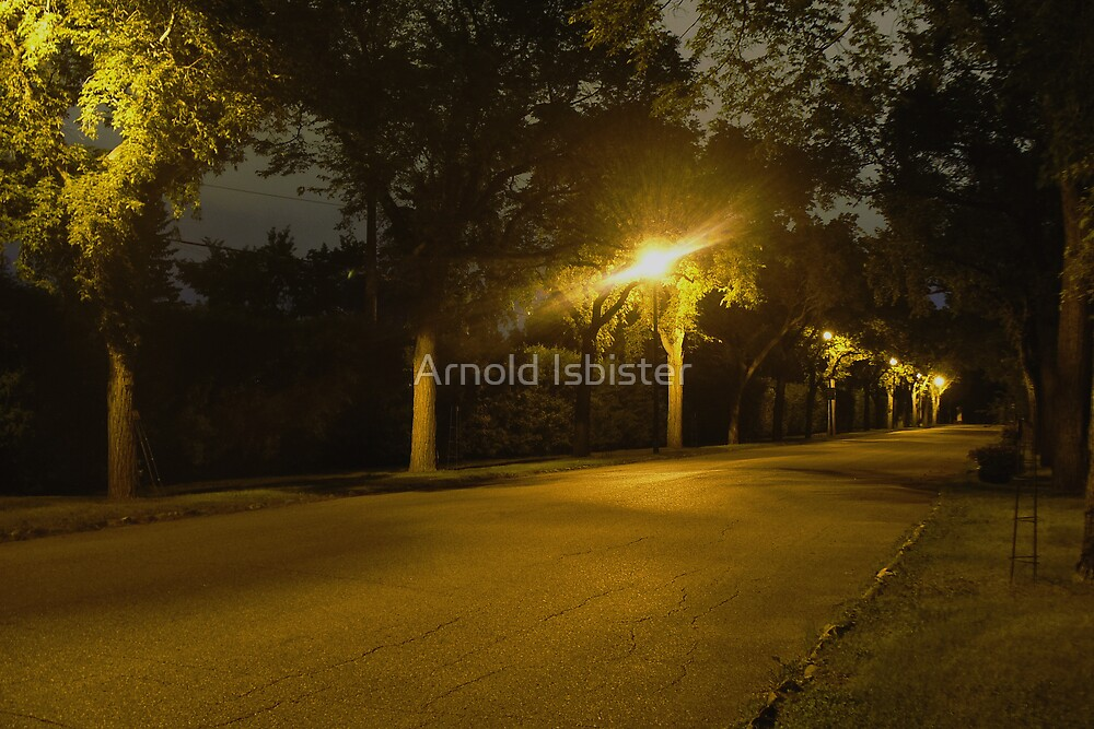 Boulevard of Dreams by Arnold Isbister