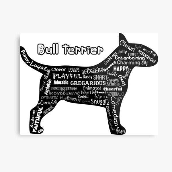 """""""Bull Terrier - Words""""  Metal Print"""
