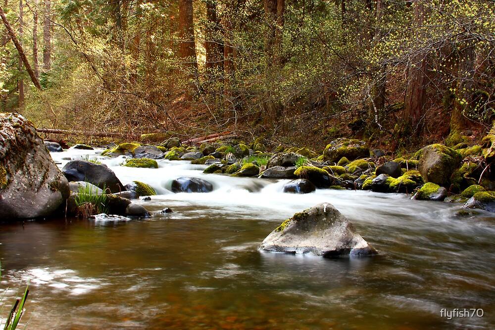 Deer Creek by flyfish70