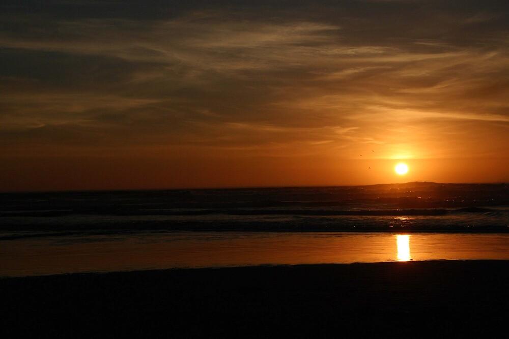 Sunset on the Oregon Coast by PhotosbyTerrell