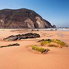 Algarve Coast: Praia de Castelejo by Kasia-D