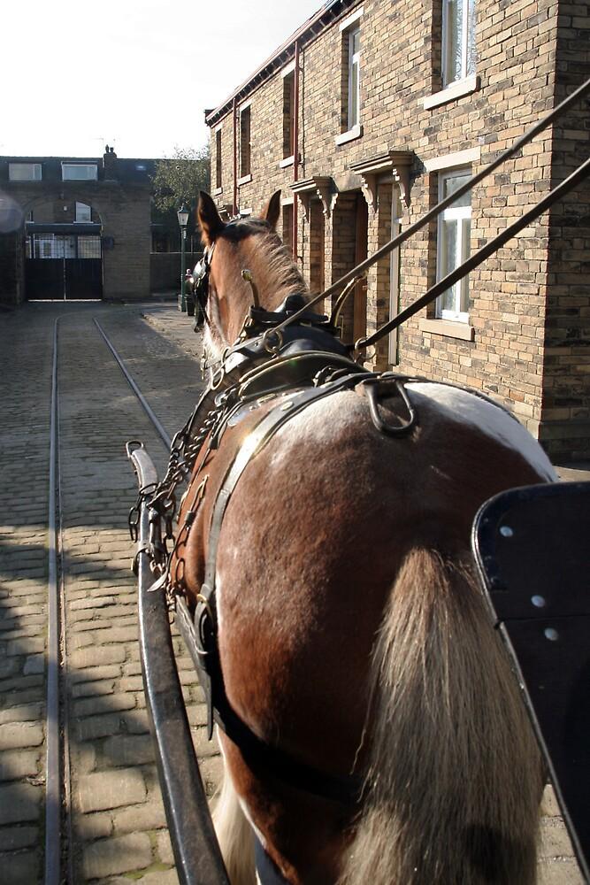 Horse at Work by CBenson
