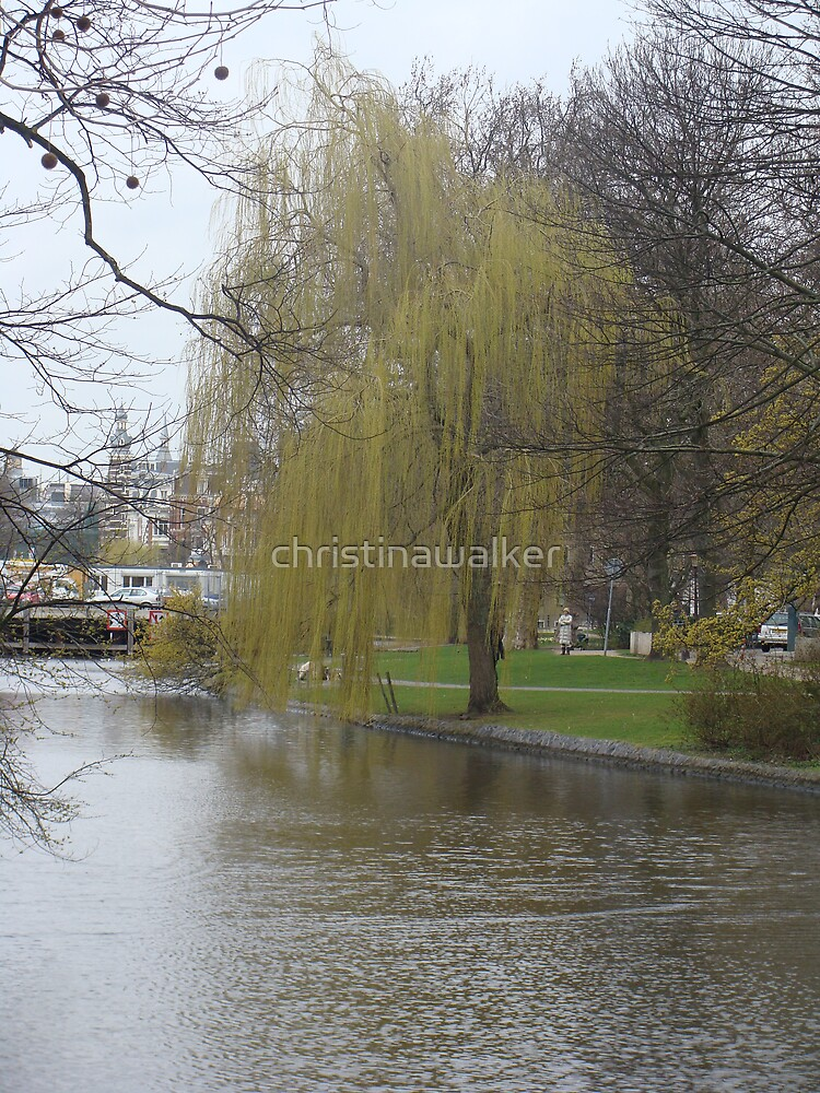 Tree against river in Amsterdam by christinawalker