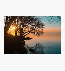 Teal and Orange Morning Tranquility With Rocks and Willows Photographic Print