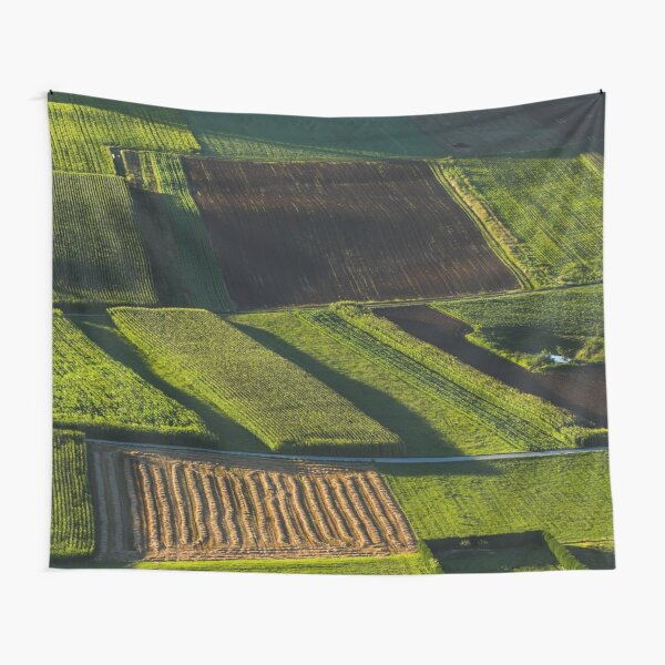 Green and brown fields before the sunset Tapestry