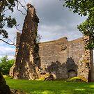 Avondale Castle by Tom Gomez