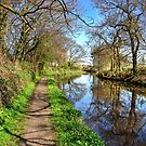 Walking along the Union Canal by Tom Gomez