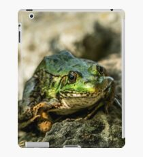 Green Frog iPad Case/Skin