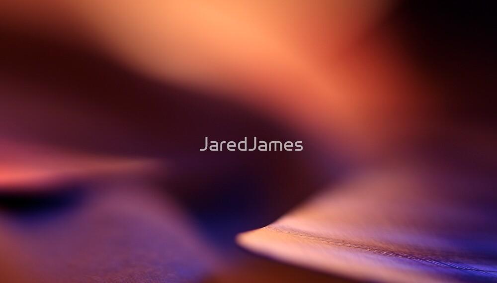 The Sleeping Dunes by JaredJames