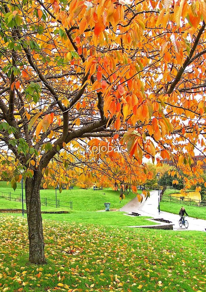 The Cyclist, CASTLE PARK, BRISTOL, ENGLAND by kojobar