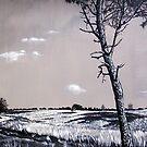 Dutch Heathland by Arie van der Wijst