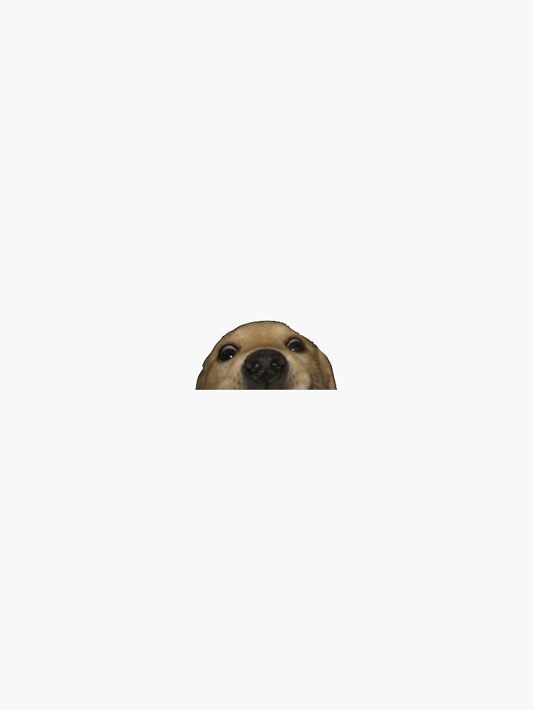 Doggo by carolinepvoigt