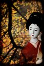 Japanese Garden by Anthony Mancuso