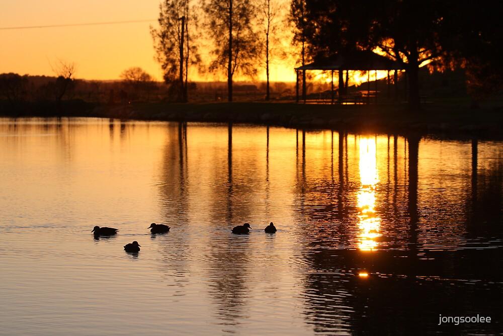 Pond morning by jongsoolee