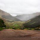 Argyll Forest Park by Yannik Hay