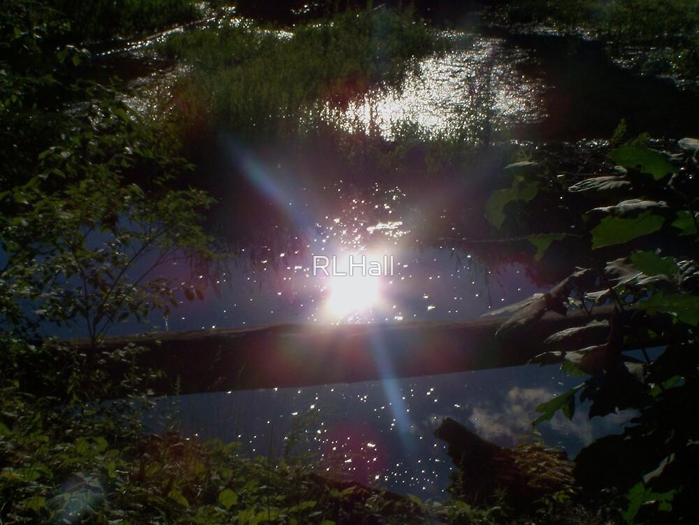 Magic Moment by RLHall