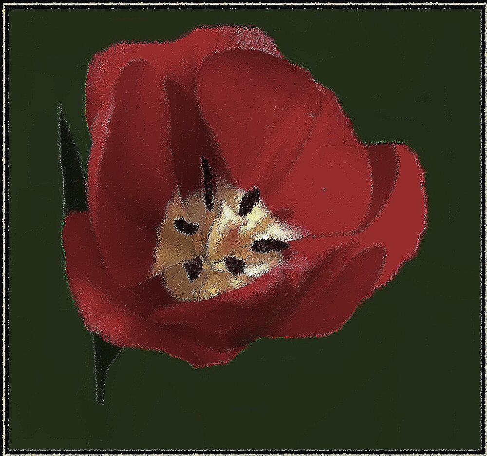 RED by Wanda Sewell-Robinson