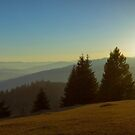 Mountain panorama at sunset by wildrain