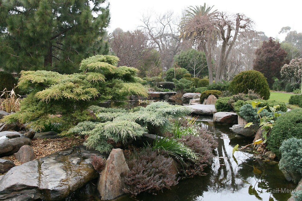 The lake of himeji gardens south terrace adelaide sa for 1 south terrace adelaide