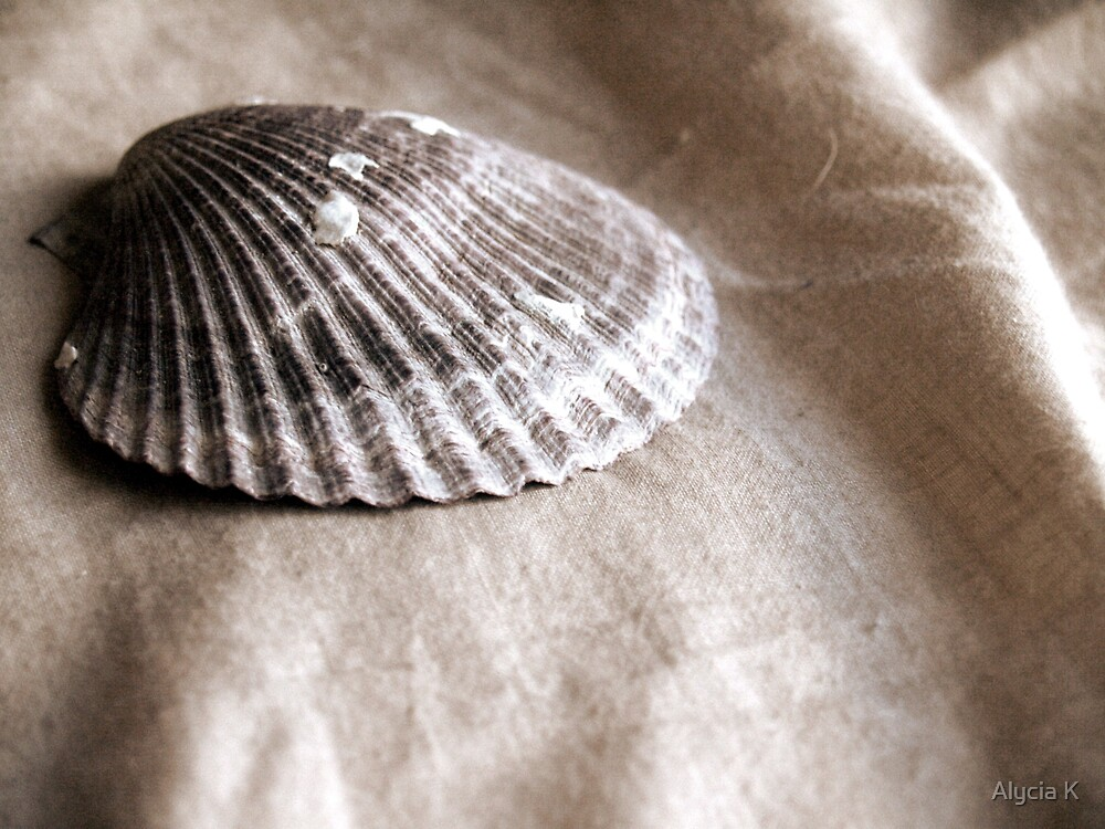 She sells, Sea shells... by Alycia K