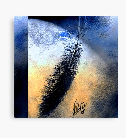 Feather in Motion Canvas Print
