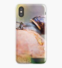 Macro world iPhone Case/Skin