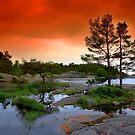 « Red Sky » par Päivi  Valkonen