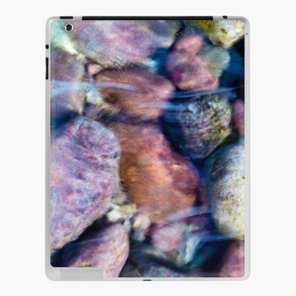 Pebbles 1 iPad Skin
