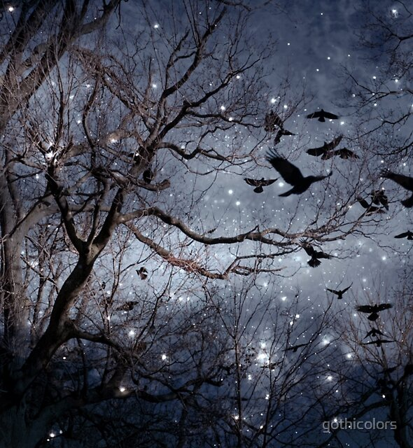 Woodland Crows  by gothicolors